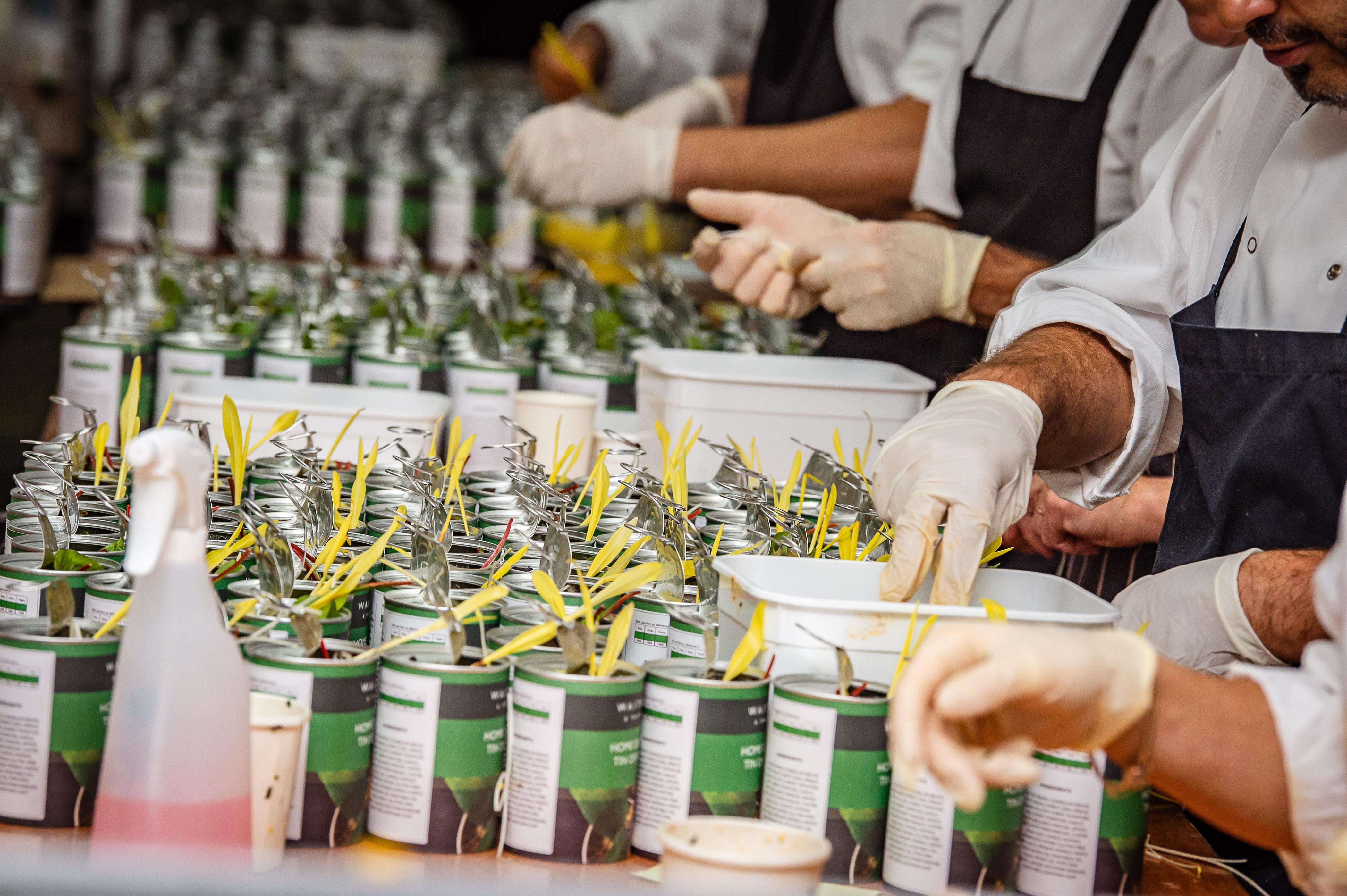 Waitrose Garden Party 20210144